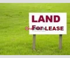 Land for Rent / Lease in Biyagama